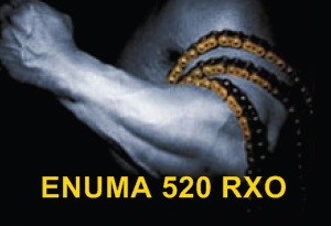 Rennkette / Racingkette ENUMA 520 RXO / 520RXO Quadra-X-Ring 102 Glieder gold